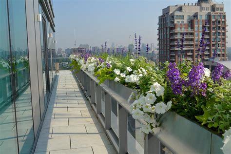 urban garden design toronto urban garden landscaping
