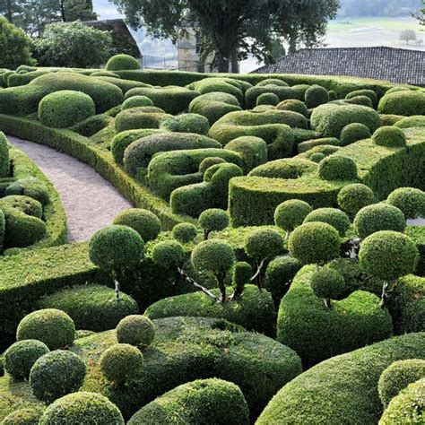 topiary garden in a gadda da vida pinterest