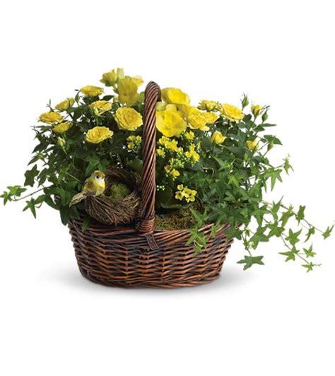 Emerald Garden Basket by Staunton Florists Flowers In Staunton Va River Hill