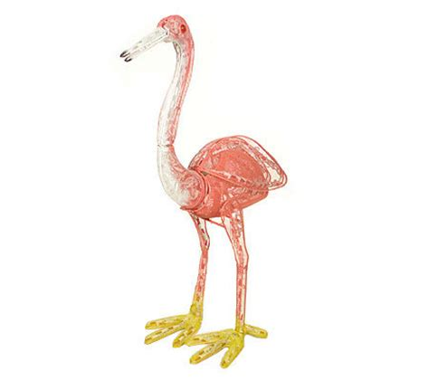 flamingo animated lighted garden sculpture qvc com