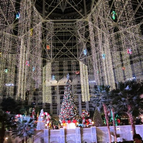 up in lights tx 17 best images about light up on ferris