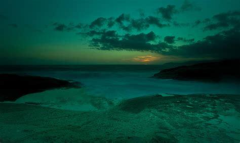 el mar de los el misterio del quot mar de los sargazos quot o el infierno verde