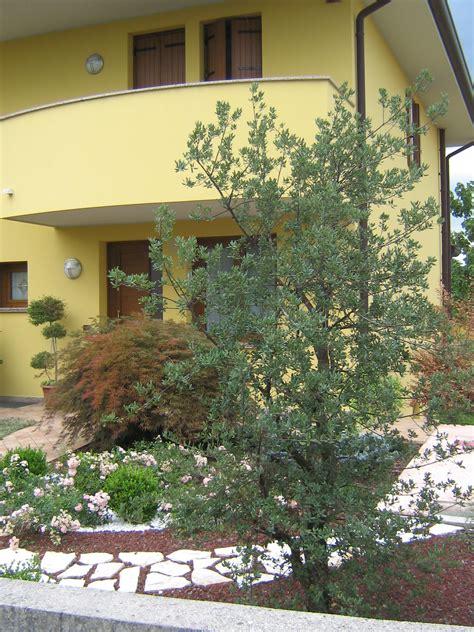 foto di piccoli giardini arredati foto di piccoli giardini arredati jonio with foto