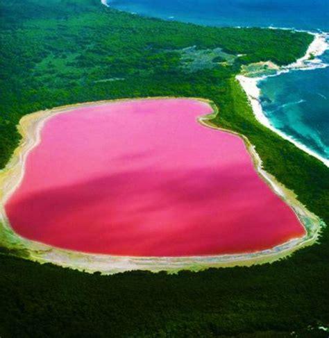 color lake australian lake turns pink in colour
