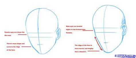 heaad shape boys how to draw manga heads step by step anime heads anime