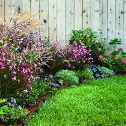 Patio Border Plants by 3 Plans For Colorful Easy Care Borders Xcitefun Net