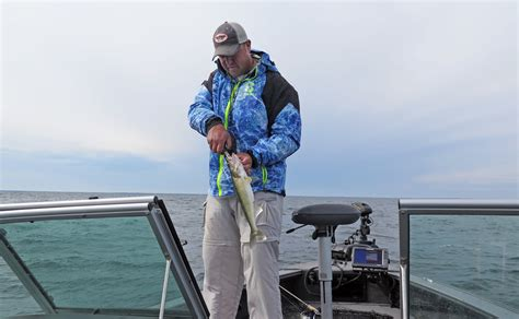 News The Guide To And Fishing by As Mille Lacs Closes For Walleye Anglers Report