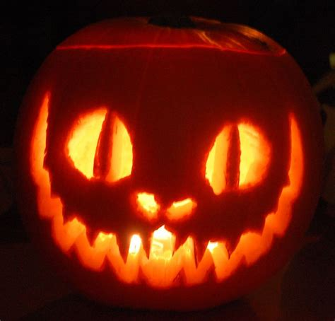 cat pumpkin best 25 cat pumpkin carving ideas on cat