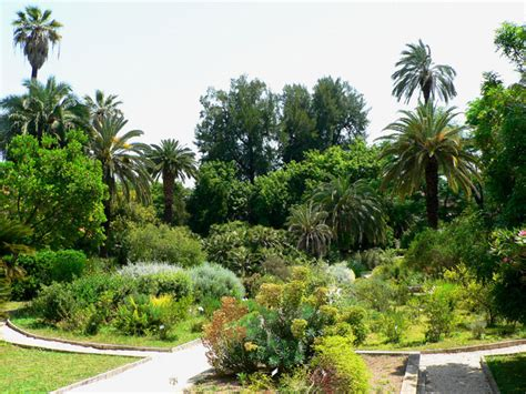 giardini botanici roma museo orto botanico sapienza universit 224 di roma orto