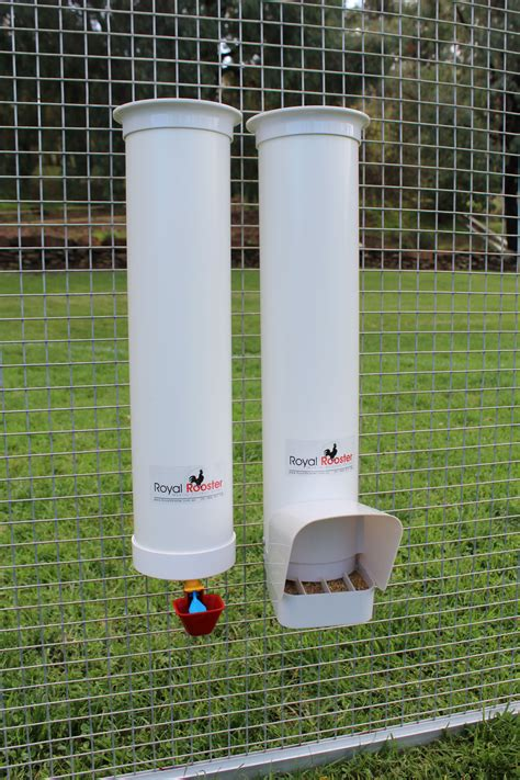 Chicken Feeders And Waterers Australia do chicken coops attract mice and rats royal rooster