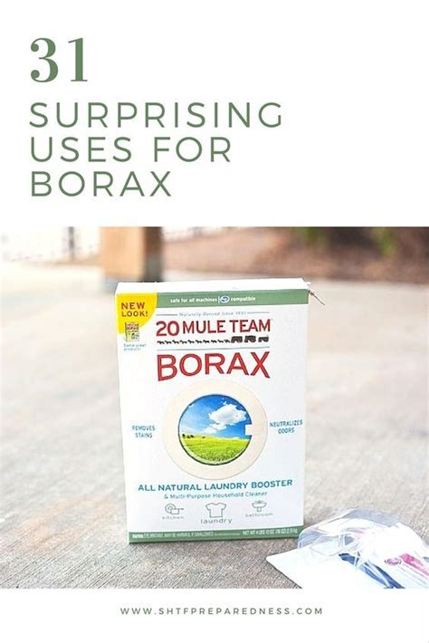 borax bathroom cleaner 25 best ideas about killing weeds on pinterest weeds