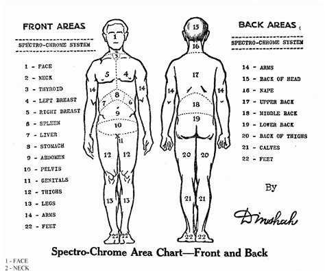 tattoo body pain locations chart chart photos 2015