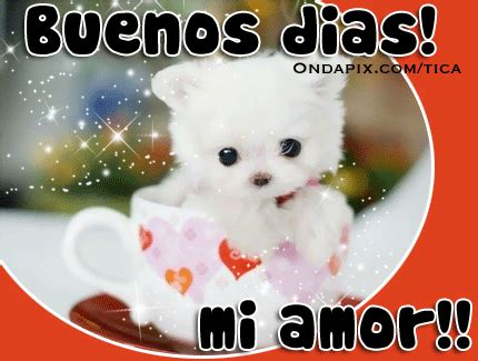 imagenes se buenos dias mi amor good morning wishes in spanish good morning pictures