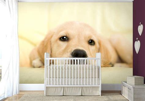 Dog Wall Murals large bedroom paper wallpaper 254x183cm wall mural golden
