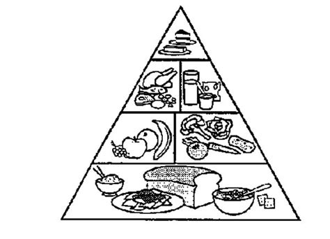 food pyramid coloring page food pyramid coloring page for preschoolers www imgkid