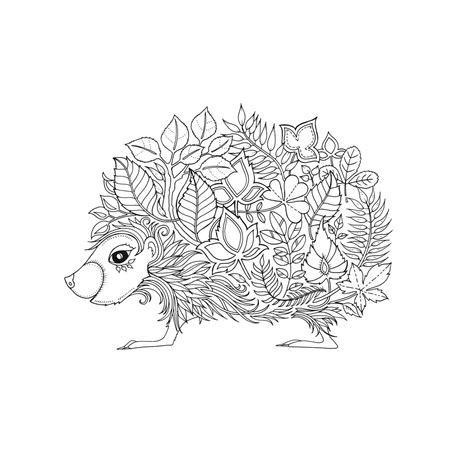 coloring book johanna artist johanna basford enchanted forest coloring pages
