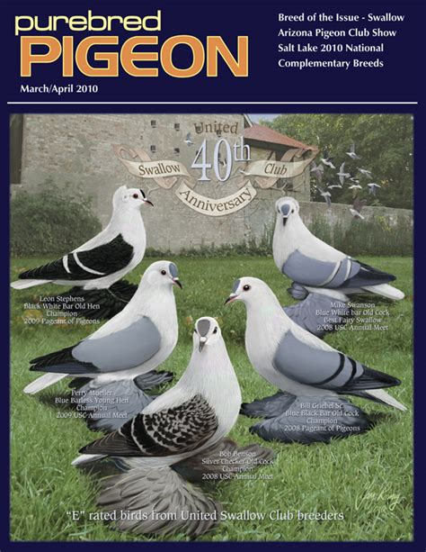 Mag Mag Pigeon pigeon magazine fancy pigeons performing pigeons racing pigeons purebred show pigeons