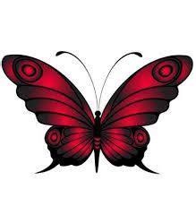 imagenes mariposas rojas resultado de imagen para mariposas rojas png mariposas
