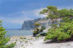 Famous Tree Houses gotland amp visby gotland excursion