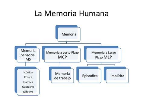 la memoria de los la memoria humana y la interpretaci 243 n