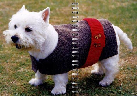 free crochet pattern for dog coats dog coat crochet and knitting pinterest