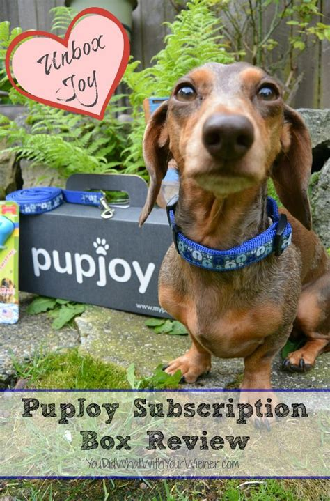 puppy subscription box 17 best images about subscription boxes on special gifts best dogs
