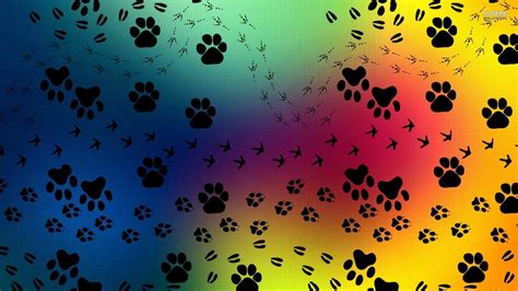 wallpaper printing paw prints wallpapers wallpaper cave