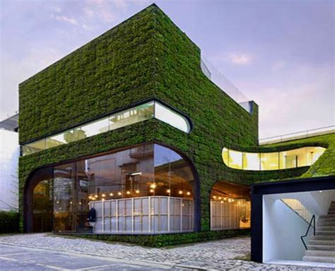 build green home roof greening home to reduce solar heat interior design architecture furniture house design