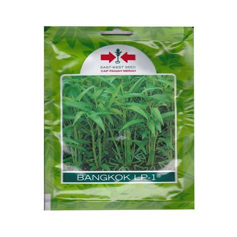 Jual Benih Kangkung Panah Merah jual panah merah bangkok lp 1 benih kangkung small pouch