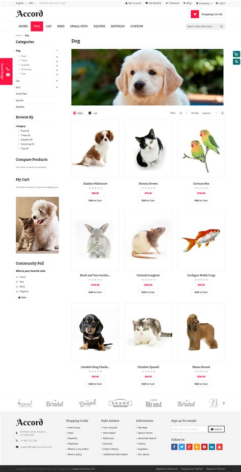 magento themes pet store accord pet store responsive magento theme by
