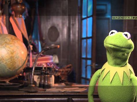 imagenes de la rana rene con doble sentido 17 mejores ideas sobre creador de memes online en
