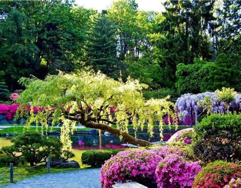 beautiful garden pictures i love egypt beautiful gardens 1