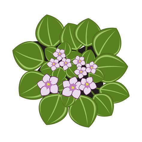 violet clipart clipart violets