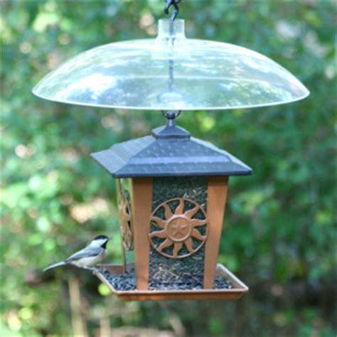 Enclosed Bird Feeder 5 Tips To Keep Squirrels Out Of Your Bird Feeders Weaver