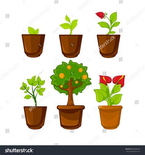 pots stock illustration image 45254770 interior plant flowers pots plants flowers stock vector