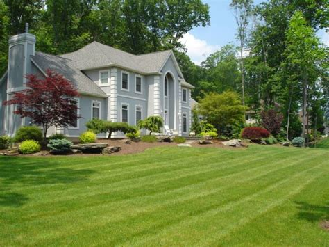 Cheap Landscaping Ideas For Front Yard Idea Jbeedesigns Backyard Ideas For