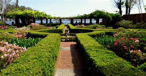 museum of gardens 25 best things to do in jacksonville fl the tourist