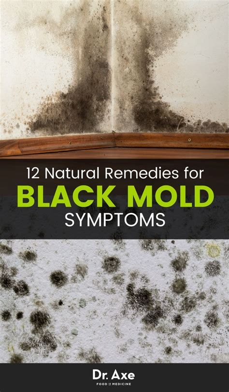 Mold Detox Books by 8 Signs You Need A Black Mold Detox Articles House And