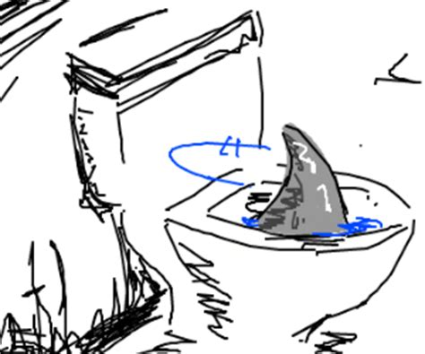 how do sharks use the bathroom toilet sharks