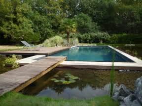 prendre soin de votre piscine naturelle loisir jardin