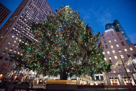 ideas about rockefeller christmas tree location cheap
