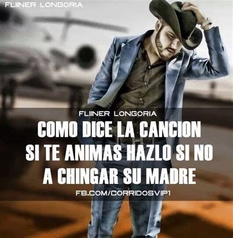 imagenes perronas con frases de narcos 27 best images about frases chingonas on pinterest daria
