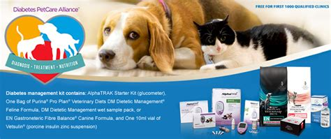 glucose meter for dogs playpens for dogs toronto chews bed in kennel puppy crates playpens puppy crates