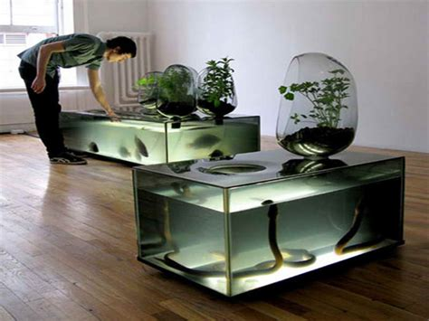 Snake Tank Decor home accessories fish tank decor ideas with snake tanks