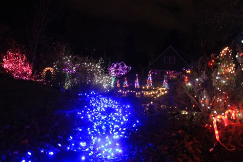 28 best christmas lights for sale christmas lights for