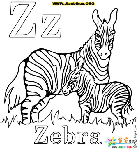 zebra coloring pages to color zebra without stripes