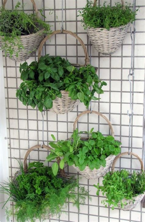 herb garden wall 17 best images about normcore eatery on pinterest tables