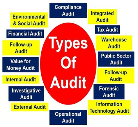 types meaning audit definition and meaning market business news