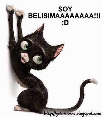 imagenes de amor de gatitos animados imagenes de gatos tiernos animados