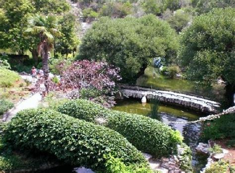 San Antonio Japanese Tea Garden by Immigration Talk With A Mexican American Amazing But True
